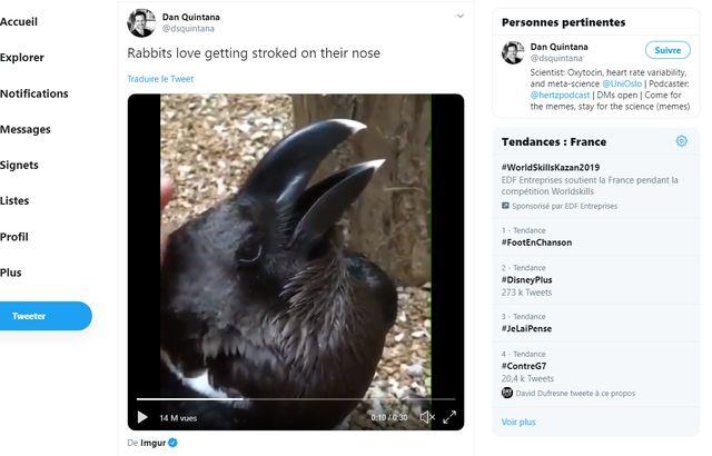 Lapin ou corbeau ? Illusion d'optique  640x410_video-vue-plus-8-millions-fois-divise-web-depuis-quelques-jours