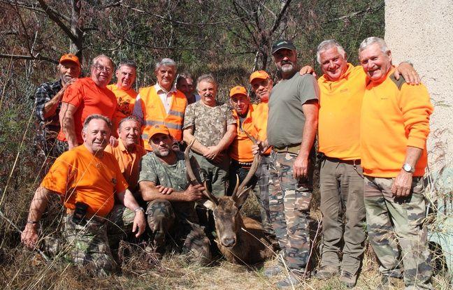 Le cerf qui a été prélevé le matin dans le massif de l'Esterel.