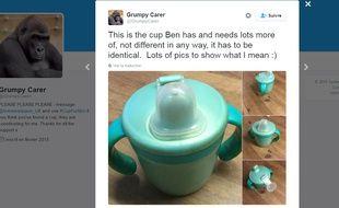 Capture d'écran de l'appel à la solidarité posté sur Twitter par le père d'un enfant autiste le 15 novembre 2016.