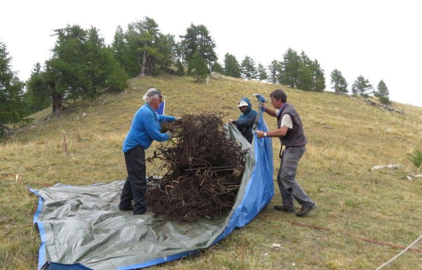 Côte d'Azur : Dans le Mercantour, ils enlèvent les barbelés de la montagne