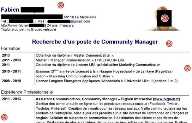 cv en ligne community manager