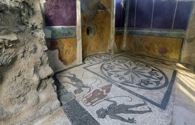 648x415 official opening of some domus after the restoration the domus of cryptoporticus pompei mosaic italy