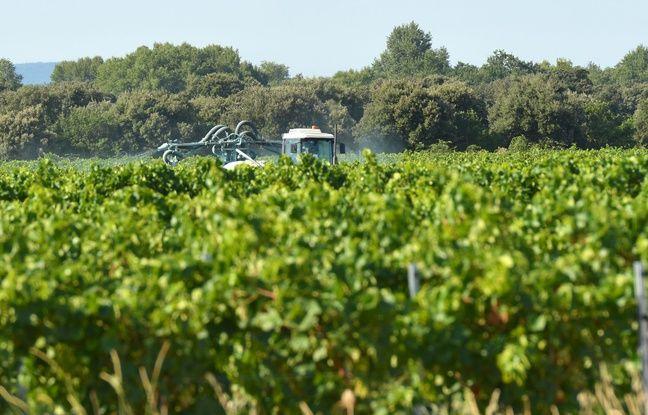 648x415 agriculteur train epandre produits phytosanitaires cultures
