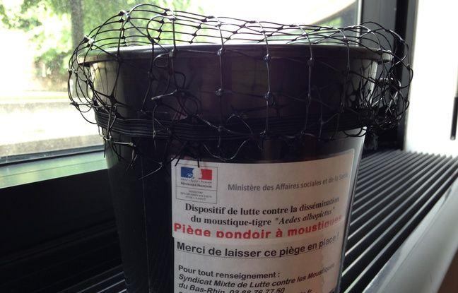 Strasbourg, le 9 mai 2016. - Le département du Bas-Rhin est au niveau 1 du plan national concernant le moustique-tigre. Trois communes sont colonisés par l'insecte: Schiltigheim, Bischheim et le quartier du Neudorf à Strasbourg. Piège pondoir à moustique-tigre.