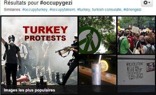 Des étudiants turques manifestent en brandissant le drapeau turc, dans le parc Gezi, le 3 juin 2013