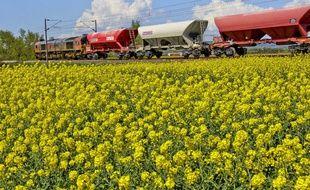 Un train de marchandises dans la campagne. Illustration.