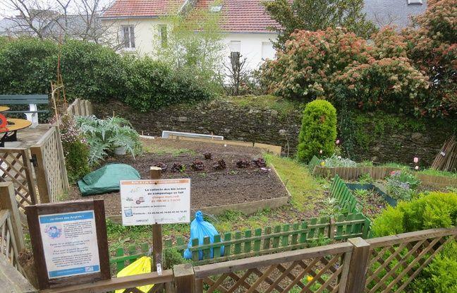 Un jardin collectif a été aménagé juste à côté du composteur.