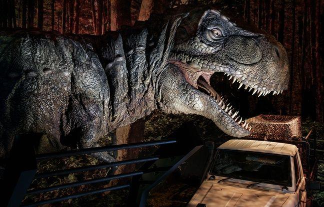 Le T-Rex, la star des films et de l'exposition «Jurassic World»