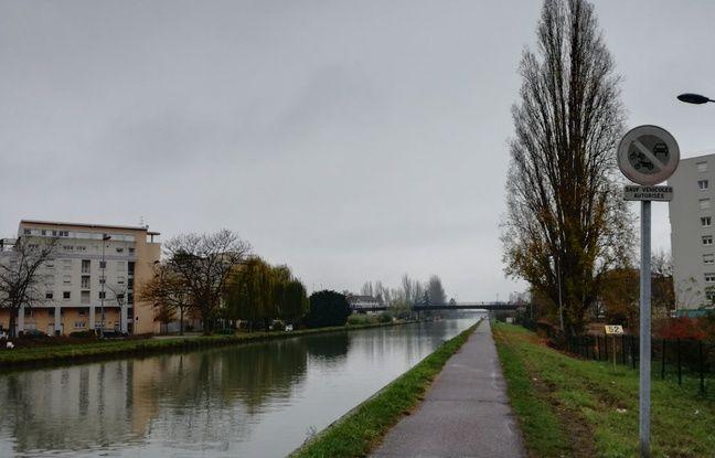 Sur la piste du canal de la Marne au Rhin à Strasbourg, il y a des piétons, des cyclistes et même des cygnes qui nichent à peine plus loin.