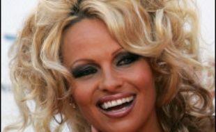 """La star d'origine canadienne Pamela Anderson s'est associée mardi à la protestation contre la chasse aux phoques au Canada, qu'elle a qualifiée de """"barbare"""", dans une lettre adressée au Premier ministre Stephen Harper."""
