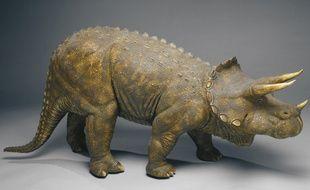 Une reconstitution de tricératops exposée au muséum d'histoire naturelle de Londres.