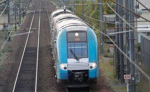 MAUVES SUR LOIRE, le 25/11/2013 Un TER entre Nantes et Angers