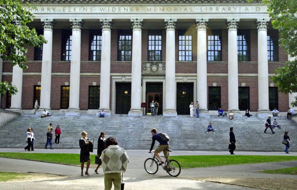 La bibliothèque de l'université Harvard aux Etats-Unis – WILLIAM B. PLOWMAN / GETTY IMAGES NORTH AMERICA / AFP