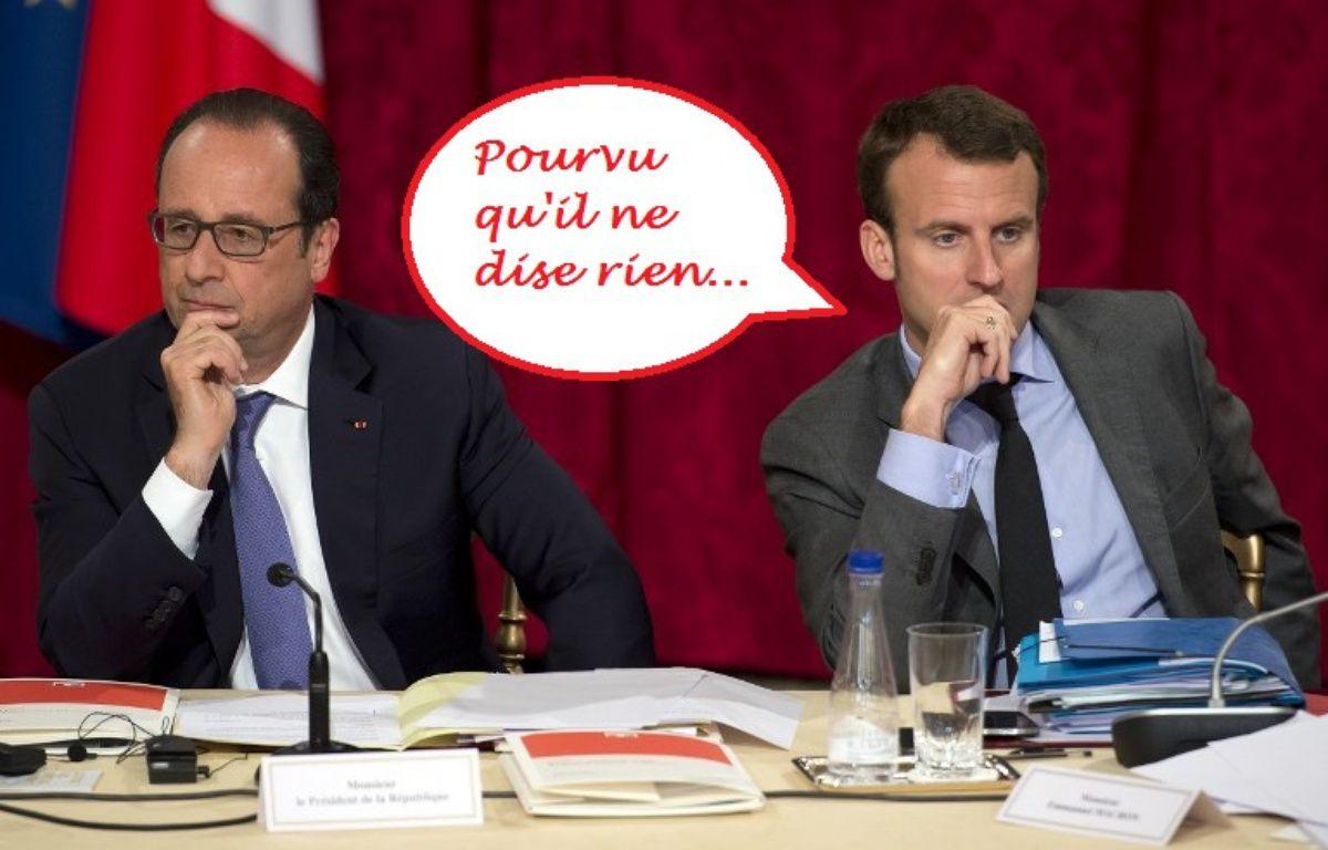 Hollande et Macron – TLG/20minutes