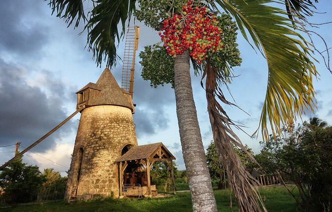 Témoin du passé sucrier de Marie-Galante, le moulin de Bézard est l'un des mieux conservés.