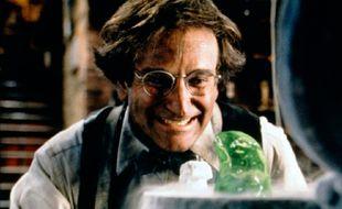 Robin Williams dans «Flubber»