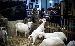 Caresser les animaux, le grand plaisir des visiteurs du Salon de l'Agriculture