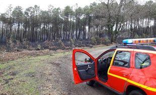 Plusieurs hectares ont été ravagés dans les Landes, sur la commune de Sanguinet.
