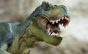 Le Tyrannosaure se déplaçait grâce à sa queue.