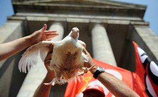 Un poulet soulevé par un salarié du volailler Doux. Ici lors d'une manifestation devant le tribunal de Quimper en 2012.