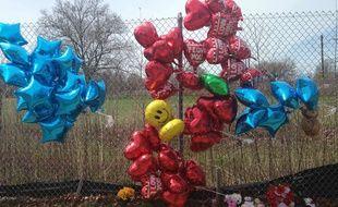 Des ballons et des fleurs déposés près du lieu du meurtre de Robert Godwin, à Cleveland, le 17 avril 2017.