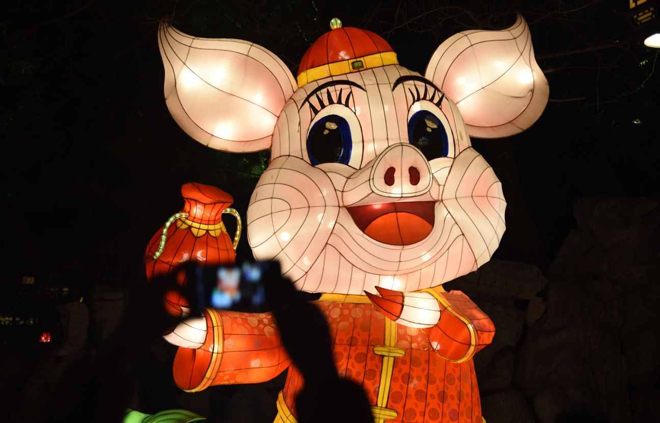 (190205) -- JINAN, Feb. 5, 2019 (Xinhua) -- A tourist takes photo of a lantern during the 40th Baotu Spring lantern fair in Jinan, east China's Shandong Province, Feb. 5, 2019, the first day of Chinese Lunar New Year.