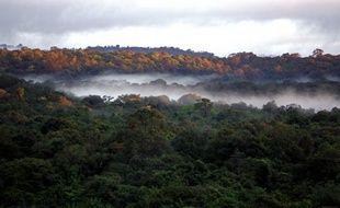 L'Amazonie, la baie d'Halong et les chutes d'Iguazu faisaient partie, selon des résultats provisoires publiés vendredi, des sept sites arrivés en tête du vote destiné à choisir les sept merveilles de la Nature, une opération lancée par la fondation suisse New7Wonders.