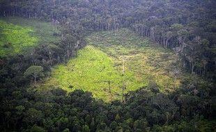 Vue aérienne d'une zone déforestée illégalement dans le Parc national naturel de La Macarena, en Colombie, le 3 septembre 2020.