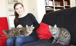 «Il y a plein d'amoureux de chats qui n'ont jamais fait le pas d'en adopter un», assure Marie Quincey. Alors si vous prêtez-le votre le temps de vos vacances ?