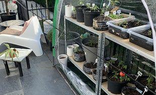 Un potager connecté: un concept accessible pour les bidouilleurs, en plein confinement