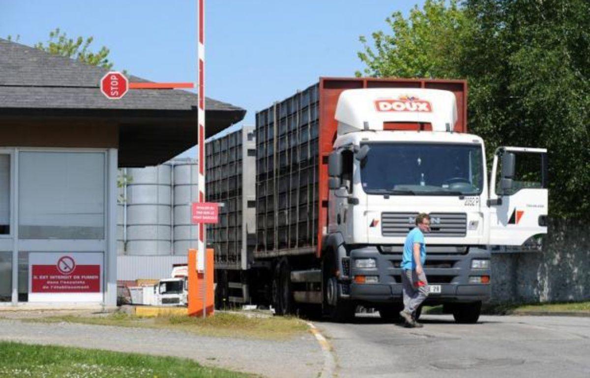 """Doux a vendu un actif non stratégique, l'usine Stanven dans le Morbihan, pour 22 millions d'euros, pour """"renflouer la trésorerie"""" de l'entreprise en redressement judiciaire, a-t-on appris mardi auprès d'un des administrateurs judiciaires du groupe volailler. – Fred Tanneau afp.com"""