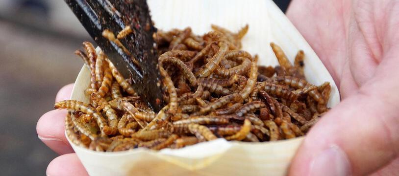 Les vers grillés sont une denrée alimentaire très prisée dans certaines régions du monde
