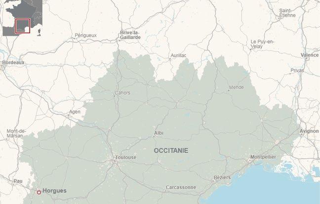 Des chiens attaqués à l'acide — Hautes-Pyrénées