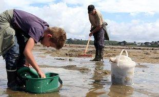 De nombreuses personnes profitent des grandes marées pour pêcher, comme ici, à Trebeurden, en août 2010.