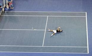 Novak Djokovic après sa victoire, le 29 janvier 2012