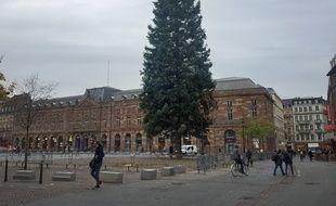 Le nouveau sapin est fissuré. Strasbourg le 7 novembre .