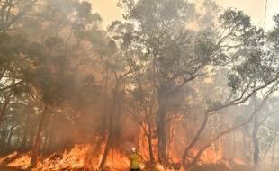 Le 10 décembre 2019, un pompier australien combat les flammes dans la région