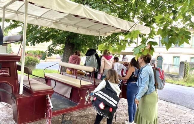 Le transport scolaire en hippobus à Saint-Selve, permet d'acheminer 25 élèves