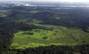 Les déboisements en Amazonie ont pratiquement triplé au cours des trois premiers mois de cette année par rapport à la même période de l'année dernière, a indiqué jeudi l'Institut brésilien de recherches spatiales (Inpe) sur la base de données satellitaires provisoires