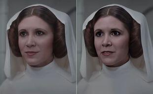 Le travail de Shamook sur la princesse Leia