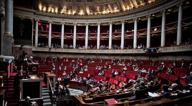 Assemblée nationale (illustration). – NICOLAS MESSYASZ / SIPA