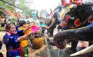 Les éléphants, aux corps peints de fleurs, arrosent les festivaliers.