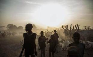 Des enfants de l'ethnie Dinka gardent le bétail à Yirol, dans le centre du Soudan du Sud, le 12 février 2014