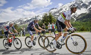 Alaf portera le maillot arc-en-ciel sur les routes du Tour, mais promis ce n'est pas une provoc envers la Hongrie.