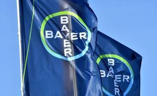 Illustration du groupe Bayer, qui a racheté Monsanto.