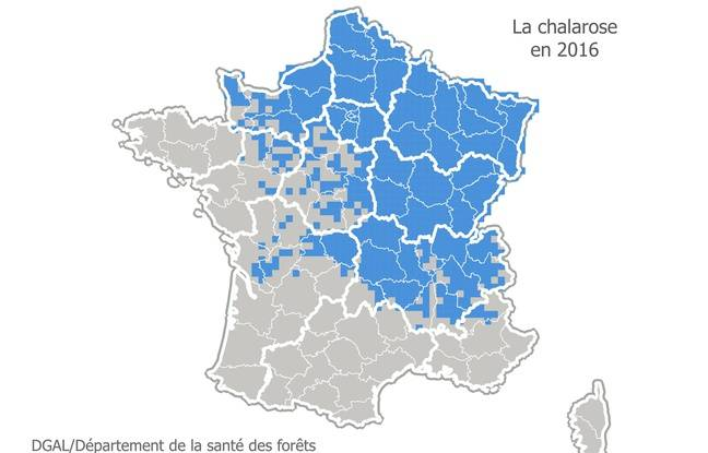 Extension de la chalarose en 2016 en France