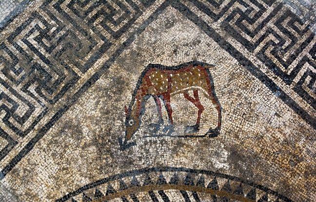 Un motif de cheval découvert sur la mosaïque à Uzès.