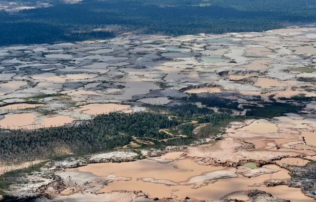Vue aérienne d'une zone déforestée chimiquement dans la forêt Amazonienne, au sud-ouest du Pérou en 2019.