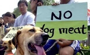 Les autorités de Séoul vont lancer une campagne d'inspection afin de vérifier l'hygiène et la qualité de la viande dans les restaurants servant de la viande de chien, théoriquement illégaux depuis les jeux Olympiques de 1988 mais tolérés.