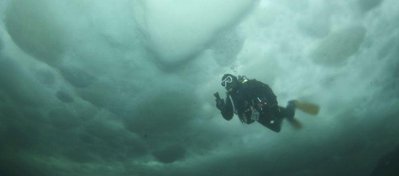 Un plongeur en mer (illustration).